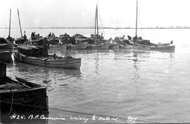 Richmond, BC; Canneries Waiting To Unload