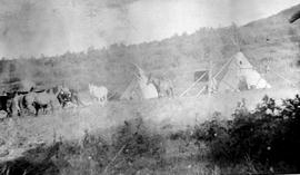 A small First Nations camp; horses and teepees.