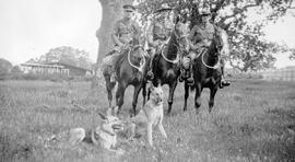 Members of the BC Police, on horseback, with their dogs.