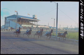 Harness Racing At Paterson Park, Ladner