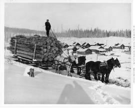 Lumberton. BC Spruce Mills Logging, Sledding Logs Past The Camp
