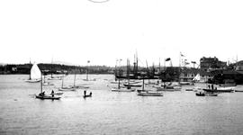 Regatta In The Inner Harbour, Victoria