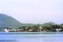 Tofino Waterfront