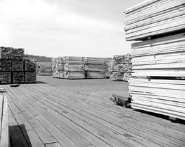Port Alberni.Stacks Of Lumber At The Sawmill