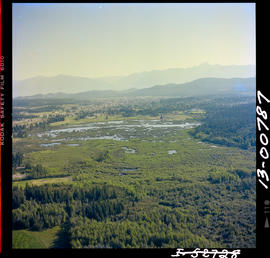 Aerial Of The Waterfowl Sanctuary, Cranbrook