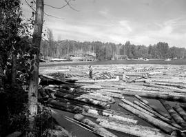 Sawmill At Mill Bay, Babine Lake