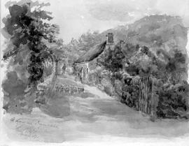 A Lane In Devonshire Fr [From] Photo [Showing Sheep Herding]