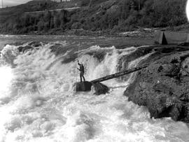 Indian hooking salmon, Moricetown Falls
