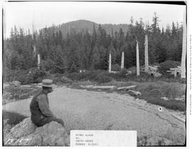 Queen Charlotte Islands; Totems At Tanoo