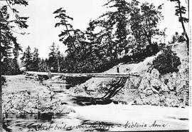 """First bridge over the Gorge - Victoria Arm""; four logs used as Gorge Bridge; left to right is Albert Maynard, and J.M. Reid."
