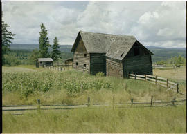 A barn at Alexandria, approximately twenty miles south of Quesnel.
