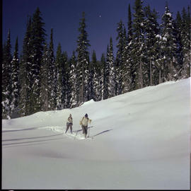 Cross Country Skiing Big White Kelowna