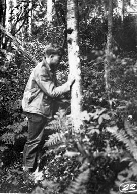 Surveying for Scotch Creek Trail; GR-0943, box 8, file 4.