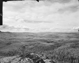 View from Greenstone forest lookout, S shot 5.