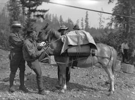"""Throwing the diamond hitch""; Don Munday on left and companions loading packhorses; pos..."