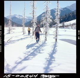 Cross Country Skiing Near Swift Current Creek