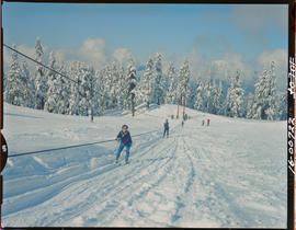 Rope Tow On Grouse Mountain, North Vancouver
