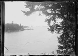 [Looking out over Esquimalt Harbour towards Fisgard Lighthouse]